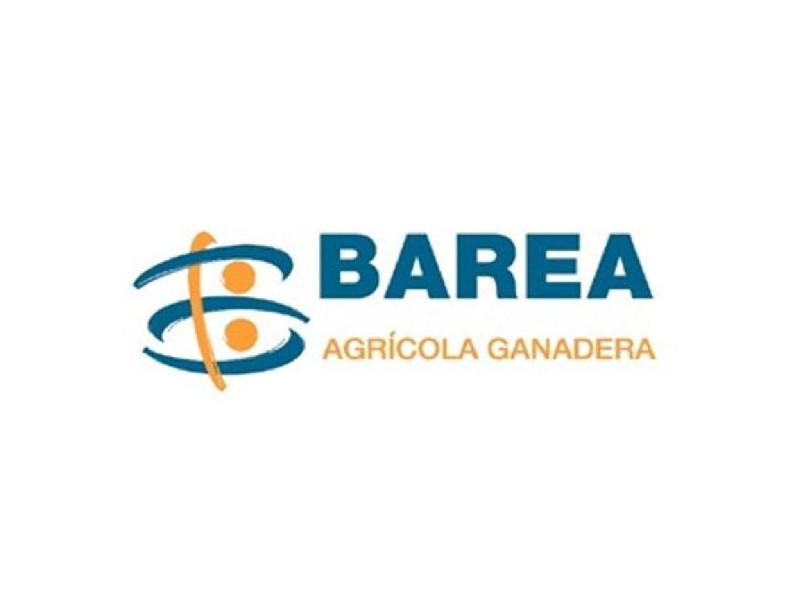 barea - ABC Imagen Corporativa